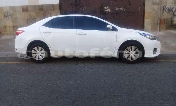 Acheter Occasion Voiture Toyota Corolla Blanc à Amaru, Tubuai