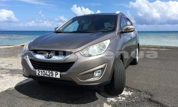 Acheter Occasion Voiture Hyundai Tucson Marron à Punaauia, Tahiti
