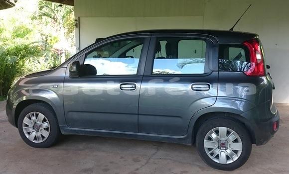 Acheter Occasion Voiture Fiat Panda Gris à Bora–Bora, Bora-Bora