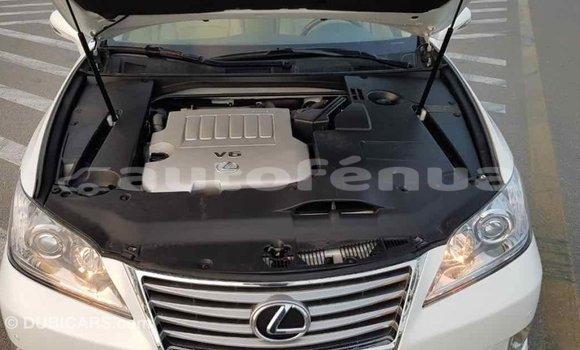 Acheter Importé Voiture Lexus ES Blanc à Import - Dubai, Marquesas