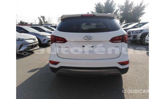 Acheter Importé Voiture Hyundai Santa Fe Blanc à Import - Dubai, Marquesas