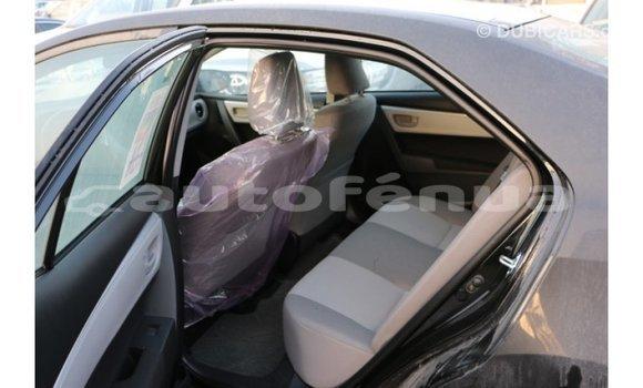 Acheter Importé Voiture Toyota Corolla Noir à Import - Dubai, Marquesas