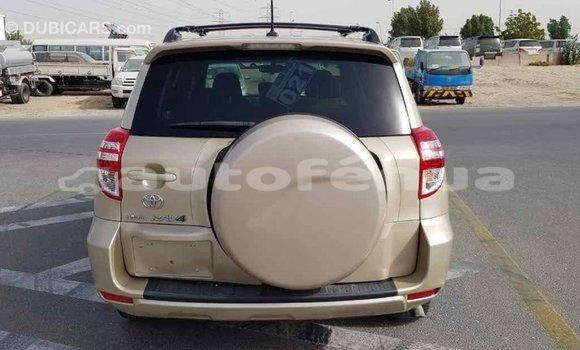 Acheter Importé Voiture Toyota RAV4 Autre à Import - Dubai, Marquesas
