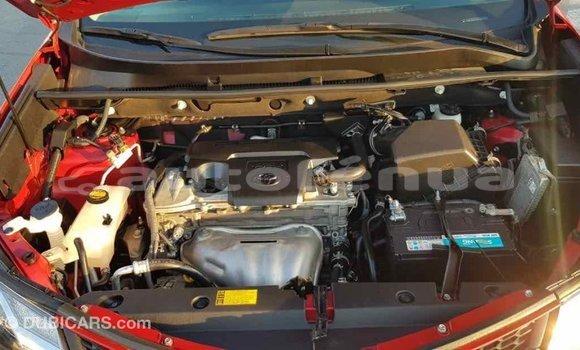 Acheter Importé Voiture Toyota RAV4 Rouge à Import - Dubai, Marquesas