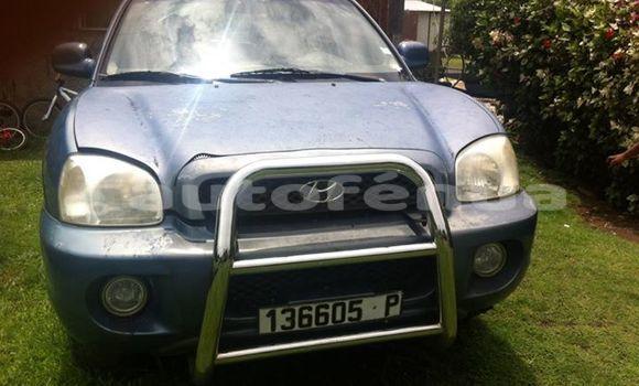 Acheter Occasion Voiture Hyundai Santa Autre à Taipivai, Marquesas
