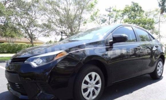 Acheter Occasion Voiture Toyota Corolla Autre à Hakahao, Marquesas