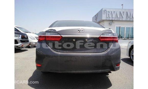 Acheter Importé Voiture Toyota Corolla Autre à Import - Dubai, Marquesas