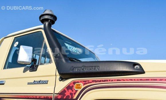 Acheter Importé Voiture Toyota Land Cruiser Beige à Import - Dubai, Marquesas