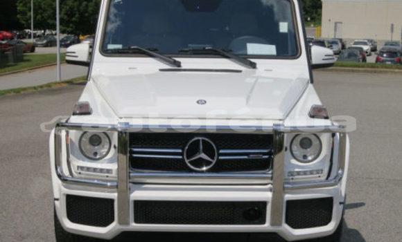Acheter Occasion Voiture Mercedes‒Benz GL–Class Blanc à Amaru, Tubuai